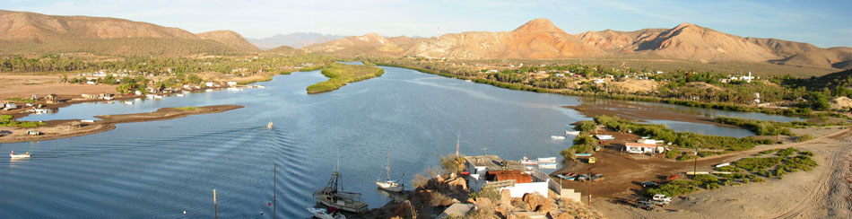 Panorama of mouth of Mulege river and mangrove forest