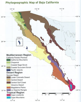 Phytogeographic map of the Baja California Peninsula