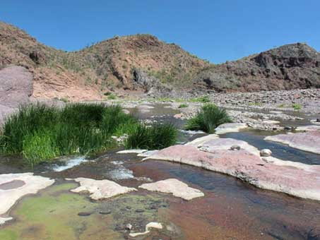 ponds in arroyo bed